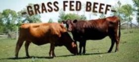 All Natural Grass Fed Beef